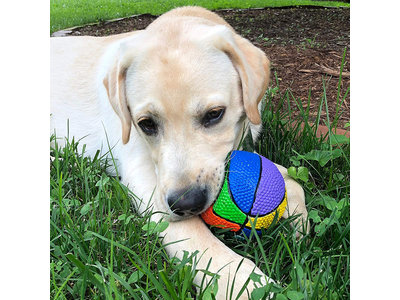 Lanco Regenboog speelgoedbal