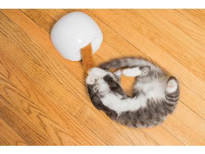 FroliCat® Fox Den Automatisch Kattenspeelgoed met Rondzwaaiende Vossenstaart