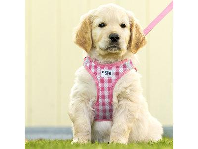 Instap Honden Tuigje + Hondenriem - Curli Puppy Set - in Roze of Blauw in Maat XXXS tot Medium