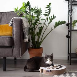 Krabspeelgoed van Karton voor katten