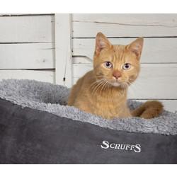 Comfortabele Kattenmand -  Zachte binnenvoering en Imitatie suède buitenvoering
