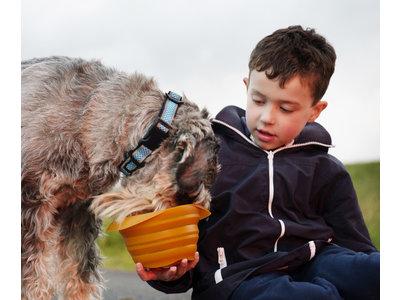 Kurgo Collaps-a-Bowl - Opvouwbare / inklapbare voerbak voor honden voor onderweg - Rood, oranje, blauw