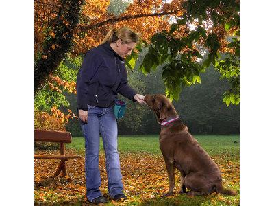 Beloningszakje voor om je middel voor Puppy Training en/of Wandelen - Wasbaar met extra rits voor sleutels e.d. - Kurgo Go Stuff It - 14x7,6x19cm