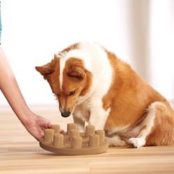 Interactief Denkspelletje voor Honden Makkelijk