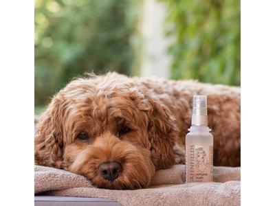 Hondenparfum Spray in 4 geuren - Greenfields - Alchoholvrije en PH Neutrale formule tegen onaangename geurtjes