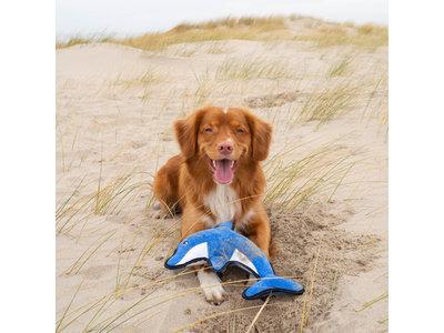Pluche Hondenknuffel met Pieper - Dolfijn