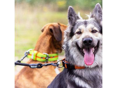 Dubbele Verstelbare Hondenriem voor Twee Honden - Met Draaibare sluiting en Zacht Handvat - Rebel Petz - Small en Large