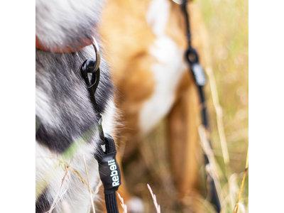 Dubbele Hondenriem voor Twee Honden - Rebel Petz - Small en Large