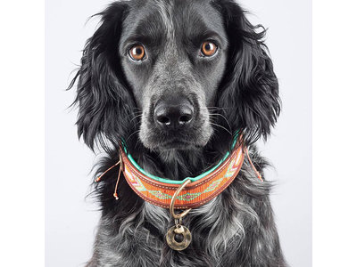 Leren hondenhalsband met kraalpatroon - Dog with a Mission Tiger Lilly - in XXS tot XXL