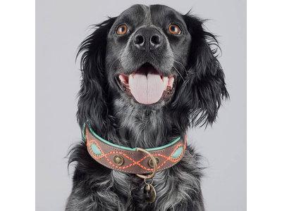 Dog with a Mission hondenhalsband Joplin