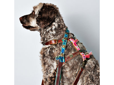 Dog with a Mission hondenriem Boho Juan