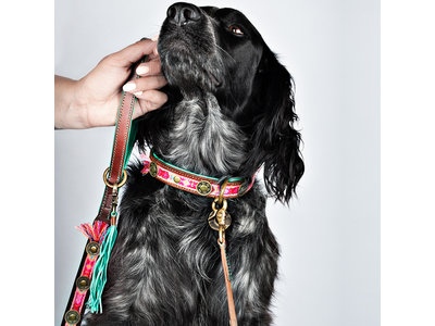Dog with a Mission hondenriem Boho Rosa