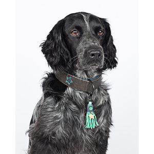 Hondenhalsband Boy