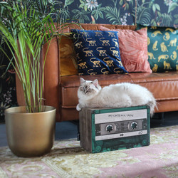 Krabmeubel mixtape kleine katten