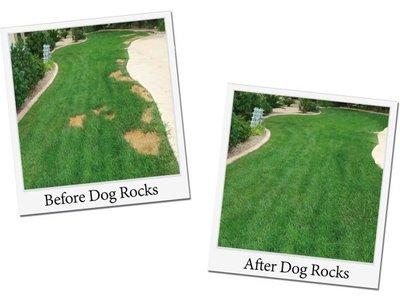 Dog Rocks Natuurstenen  - Voorkom Gele of kale plekken in het gras - 100% natuurlijk product