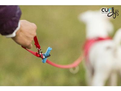 Trendy en Sterke Hondenriem in diverse Kleuren