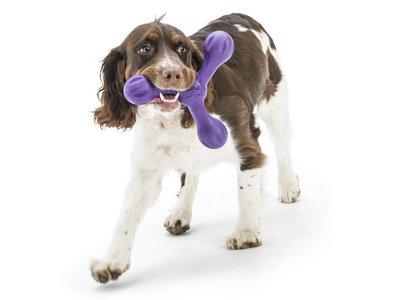 Sterk interactief hondenspeelgoed Skamp - met Zogoflex Echo - B Corp