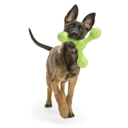 Sterk Interactief Hondenspeelgoed - met Zogoflex Echo
