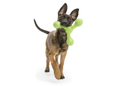 West Paw Skamp - Sterk interactief hondenspeelgoed  - met Zogoflex Echo - Vervangt de houten stok