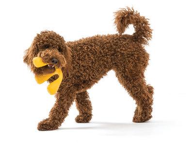 Interactief hondenspeelgoed Wox - met Zogoflex Air - B Corp