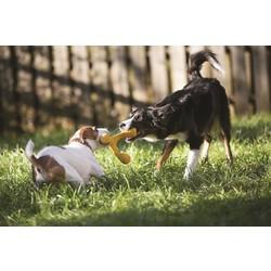 Interactief Hondenspeelgoed - met Zogoflex Air