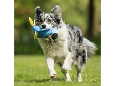 Hondenknuffel Lucy de Papegaai