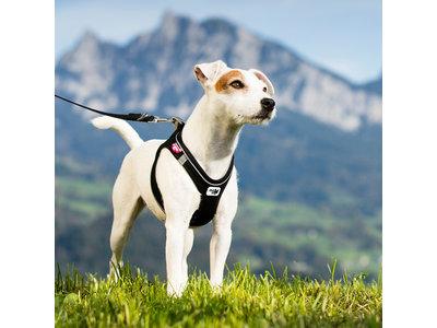 Zelfsluitend, Lichtgewicht Comfortabel Instap Honden Tuigje - Curli Air-Mesh in zwart en rood XXS tot L