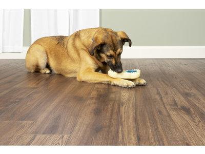 PetSafe® Busy Buddy Forever Bone Traktatiering - Vulbaar met lekkere traktaties - Beschikbaar in 3 maten