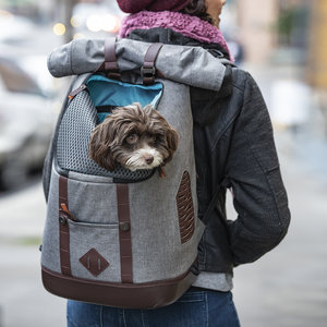 Stijlvolle Hondenrugzak voor Kleine Honden