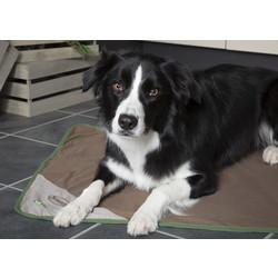 Hondenplaid tegen Vlooien, Luizen  en Teken