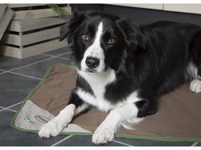 Insect Shield Hondenplaid tegen Vlooien, Luizen en Teken