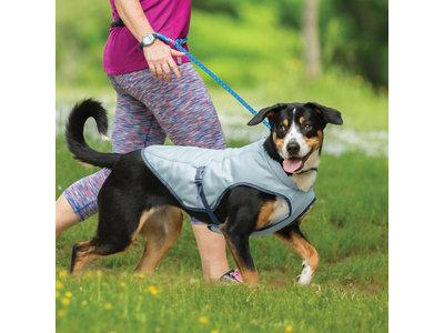 Koelvest voor honden verkrijgbaar in vier maten - Verkoeling voor je hond