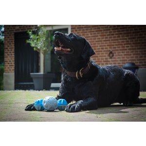CoolPets Cool Dog Frozen Ball - Verkoelende bal voor honden