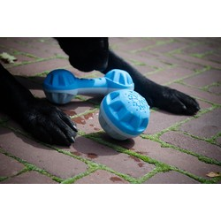 Verkoelende bal voor honden