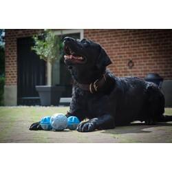 Verkoelend bot voor honden