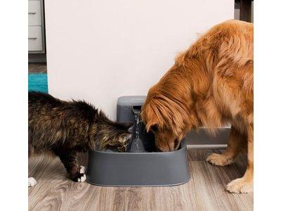 PetSafe Drinkwell® 7.5 litre Pet Fountain - Drinkfontein voor grote honden - Met vrijvallende waterstroom en verstelbare stroomsnelheid - 7,5 liter