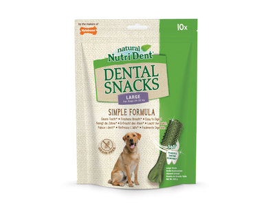 Nylabone Nutri Dent Denta Stix - Gebitsverzorgende hondensnack om tandplak en tandsteen te verminderen - Verfrist de adem - Mini / Small / Medium / Large