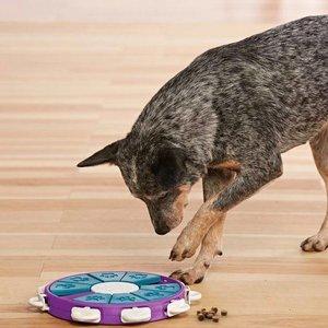 Interactief Twister Spel voor Honden vulbaar met snacks - Outward Hound