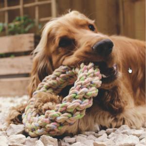 Duurzaam speelring voor honden van henneptouw