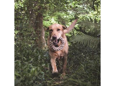 Duurzame stevige speelring voor honden gemaakt van henneptouw - Beco Pets Flostouw