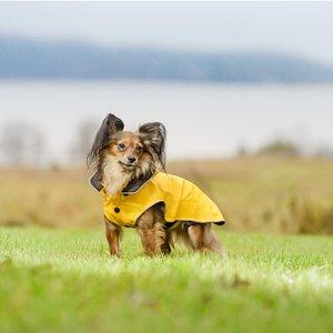 Trendy gele hondenregenjas