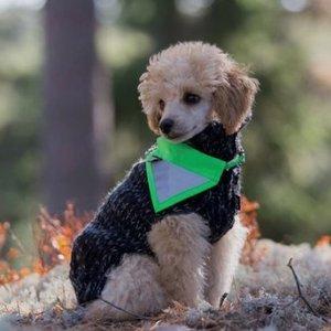 Reflecterende veiligheidsbandana voor honden