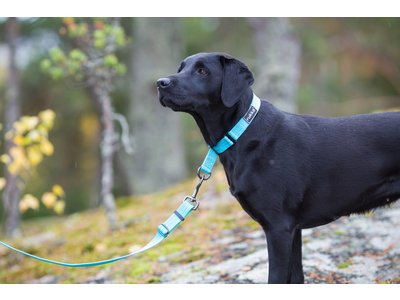 Rukka Pets Twist Leash - Duurzame hondenriem van gerecycled materiaal -  Medium, large - Turquoise, roze