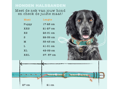 Vegan hondenhalsband Sandy Moon met stoer denim