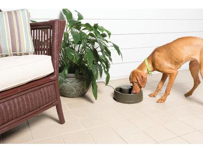 PetSafe Drinkwell® Current Pet Fountain - Drinkfontein voor katten en honden - Continu bewegend water - Water wordt constant door de kom gecirculeerd - 1,2 liter / 2,4 liter / 3,5 liter