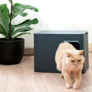 Hoopo Design Kattenbak in 3 Kleuren - Hoopo Dome Litter Box