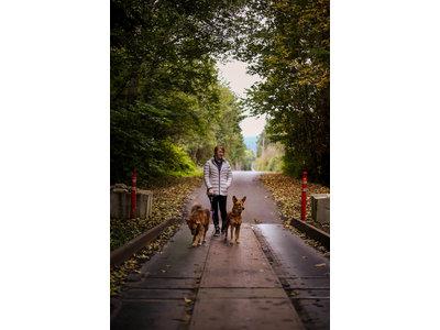 Wigzi Dual Doggie Gel Leash - Dubbele Hondenriem met Anti-Knoop, Gelhandvat en Lampjes