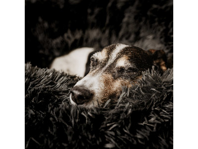 Hondenmand Comfortabel en Zacht Pluche - District 70 FUZZ - Zand, Oud Roze en Donker en Licht grijs in S/M/L/XL