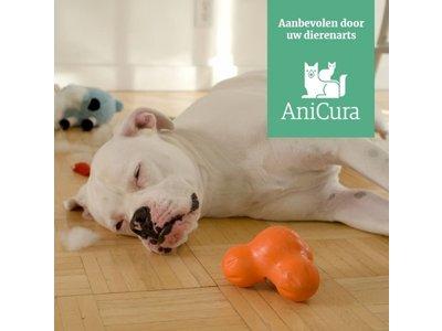 West Paw Tux Zogoflex - Extra sterk & vulbaar speeltje voor honden - Groen, oranje, blauw - S / L