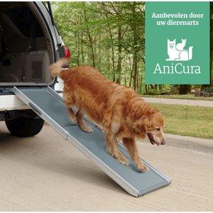 Happy Ride Deluxe Loopplank voor Honden